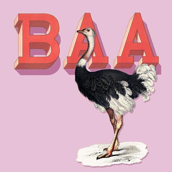 ostrich:baa copy.jpg