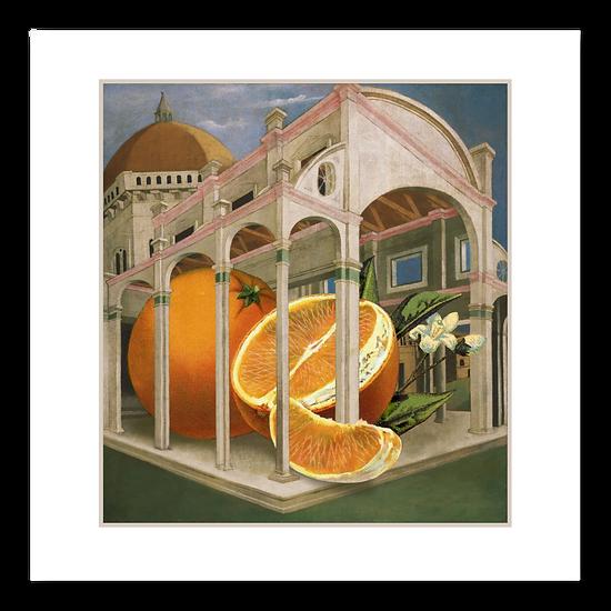 Big Produce: Oranges