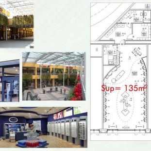 Commercial development plan, Matteucci Group