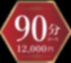 料金90分コース 12000円