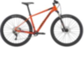 Mountain bike rental Mauriitus - Real Ma