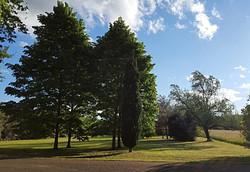 Jardin des Tilleuls