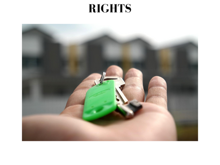 BAILOR: DUTIES, LIABILITIES AND RIGHTS