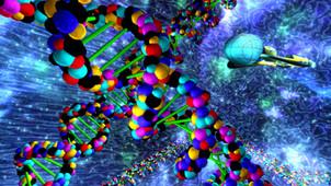 DNA Environment