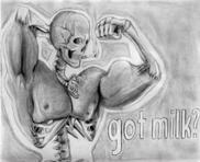 Bone and Muscle Study