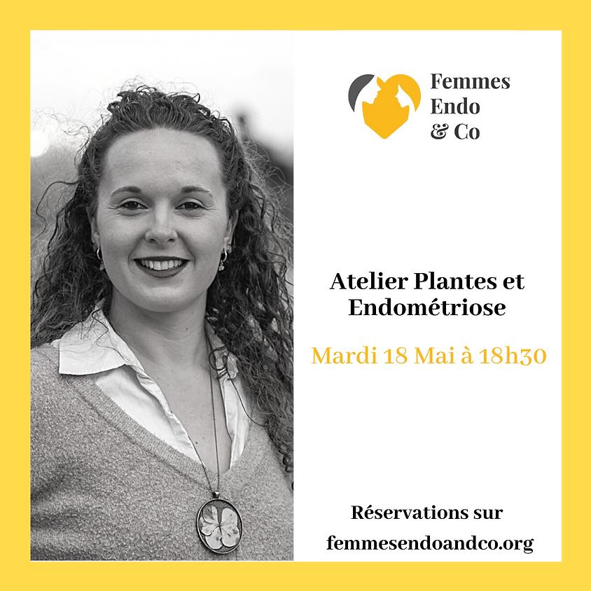 Atelier Plantes et Endométriose
