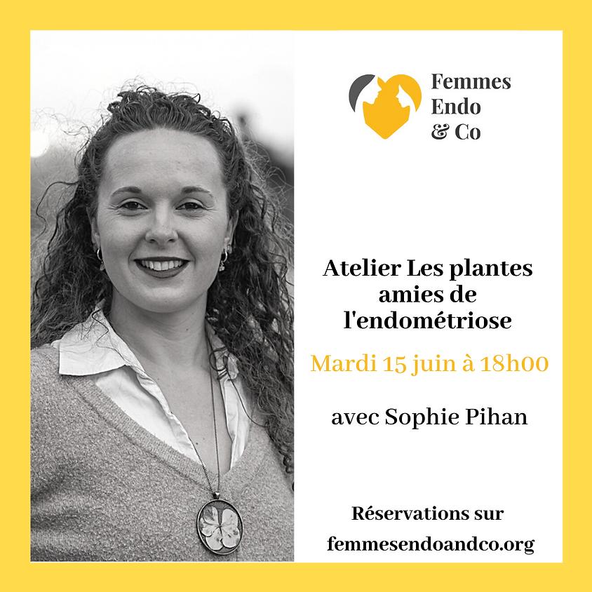 Atelier Les plantes amies de l'endométriose avec Sophie Pihan