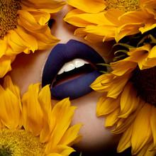 sunflower_1.jpg