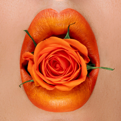 orange_rose_1.jpg