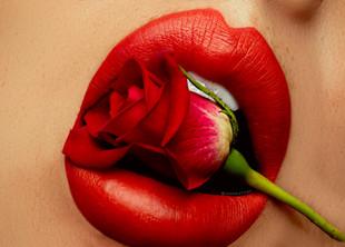 red_rose_bite_1.jpg