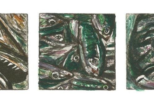 A Trio of Fish - Hake, Sardines & Bream