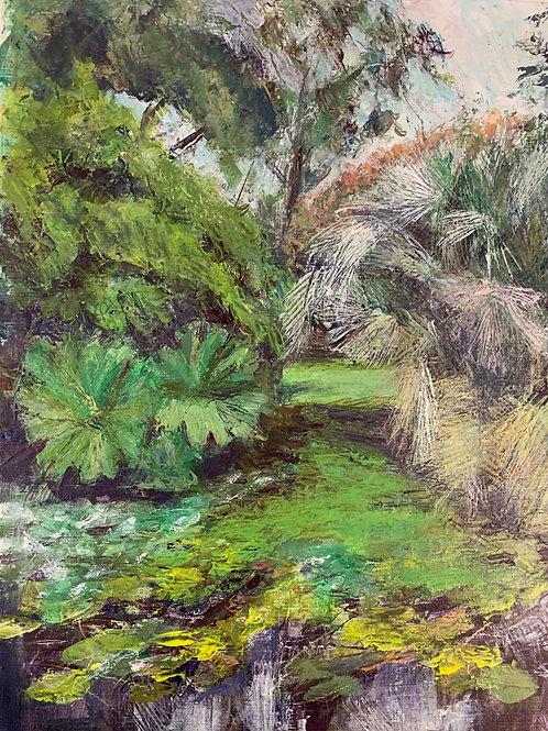 Lower Pond, Morrab Gardens, Penzance