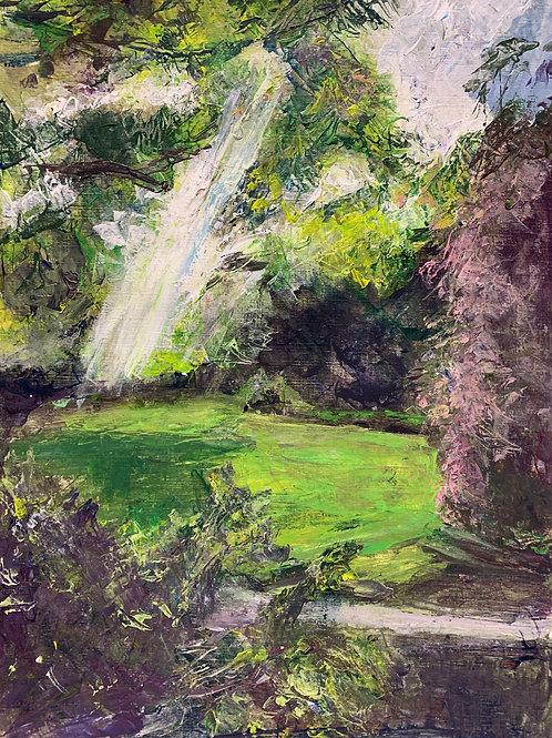 Sunbeam, Morrab Gardens, Penzance