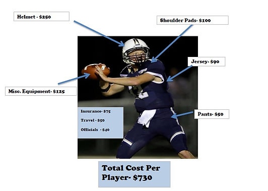 Player cost.jpg