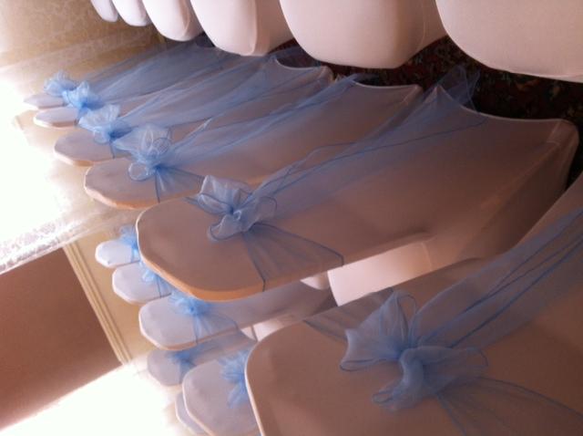 Pale Blue Bows