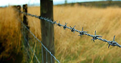 636549911142676214_Barb wire fences in B