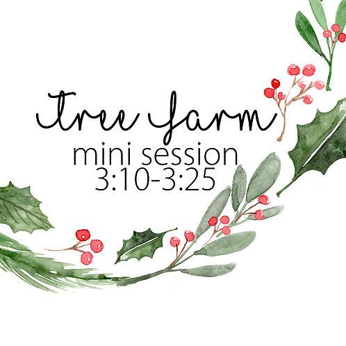 Tree Farm Mini 11.22 @3:10