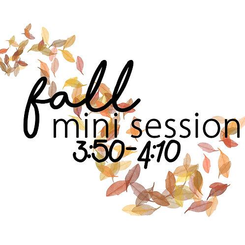 Fall Mini 11.3 @3:50