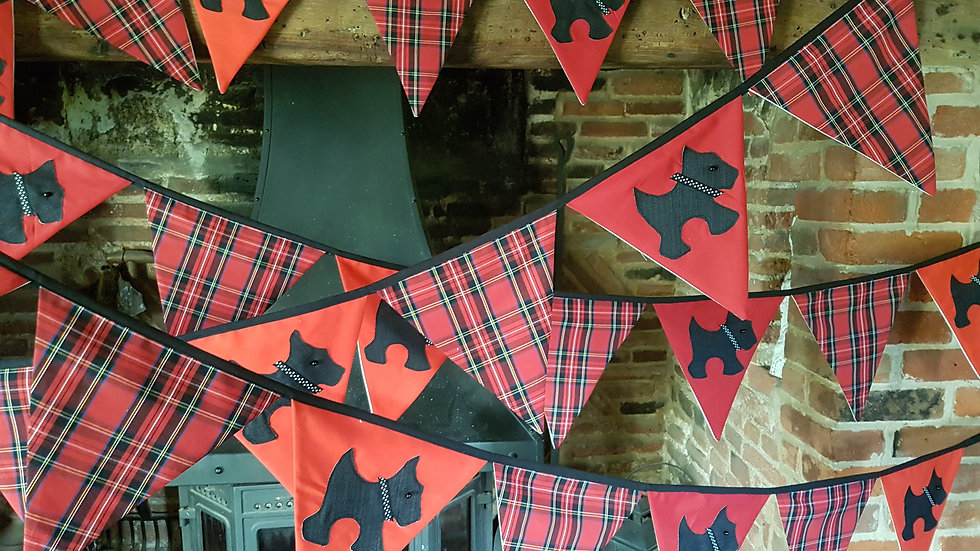 Scottie Giant Bunting