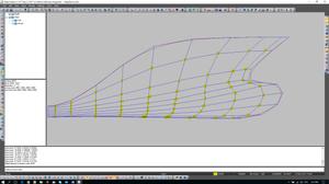 11x11 Points distribution picture.