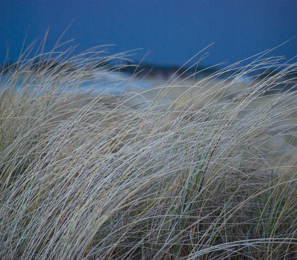 Winter in Sola strand