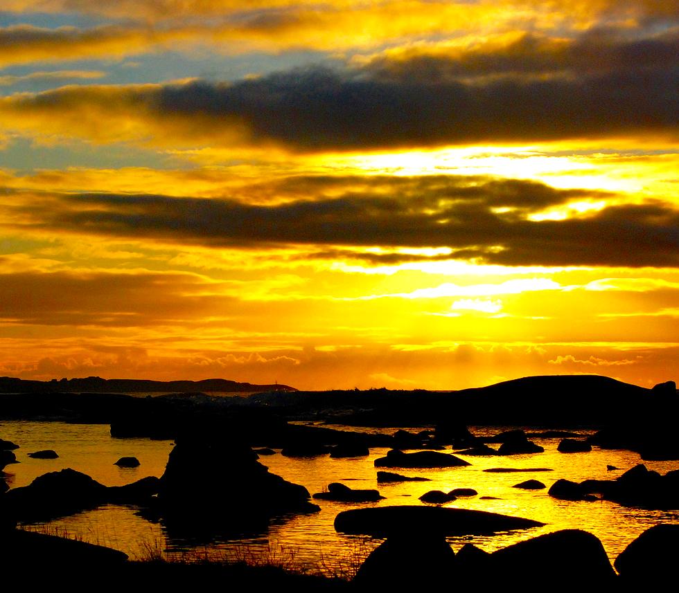 Bronze sunset