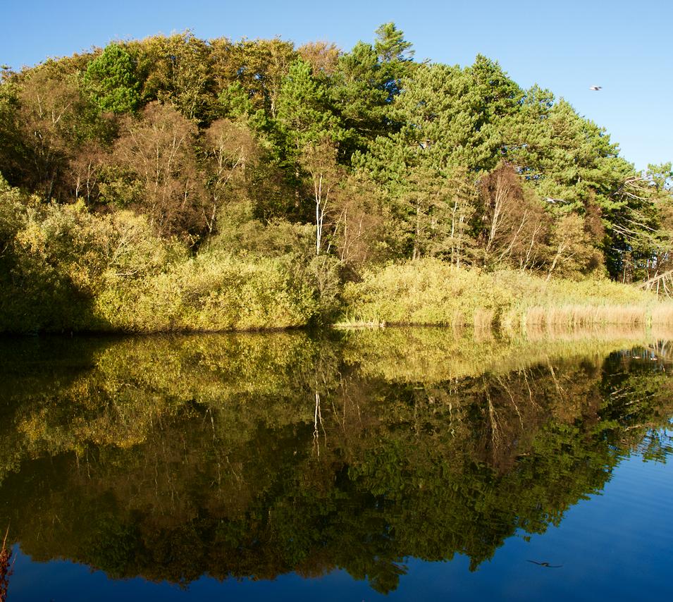 Autumn at Stokkawatnet