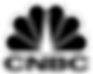 CNBC Logo Trans.png