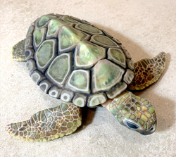 Articulated Sea Turtle