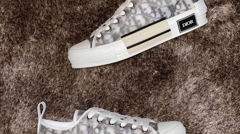 Dior B23 Low grey