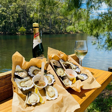 TheOysterFarmersDaughter_oysters5.png