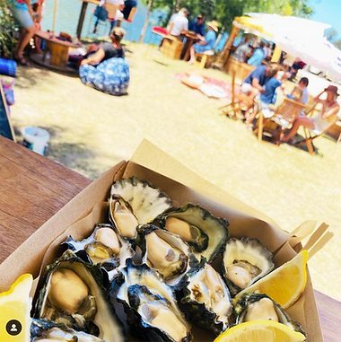 TheOysterFarmersDaughter_oysters4.png