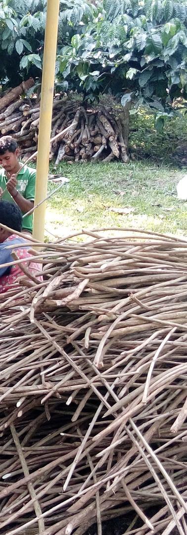 workshop Lantana peeling sticks - Copy.j