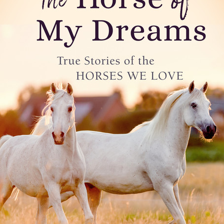 The Horse of My Dreams
