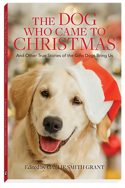 Grant_DogWhoCameToChristmas_3D.png