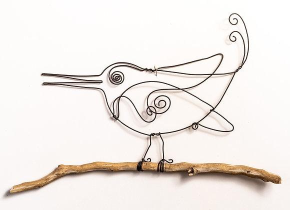 ציפור מקורונה
