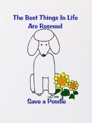 Rescue Poodle Note Card (RPNC)