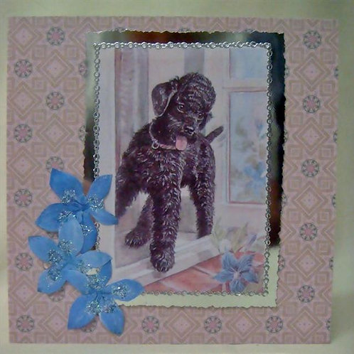 Black Poodle Greetings Card (BPGC)