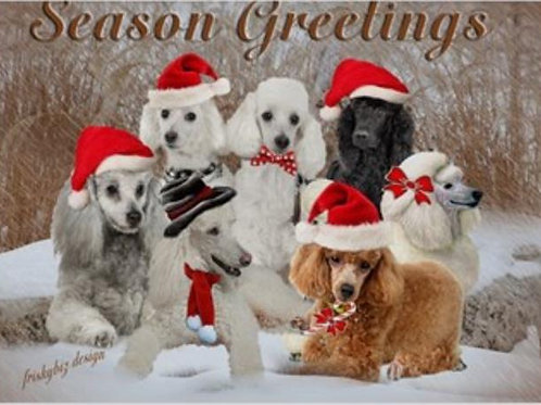Season Greetings (SGCGC)