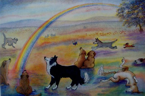'Rainbow Bridge' Sympathy Card (RBSC)