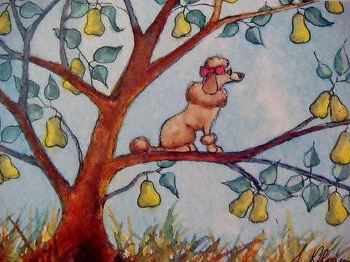 ...and a Poodle in a Pear Tree (AAPIAPTCC) 5 Pack