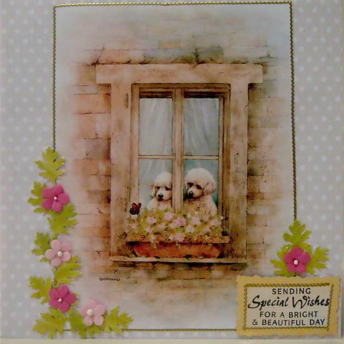 Poodle 'Special Wishes' (PSWGC)