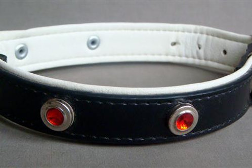 Black Collar with Red Stones & White Lining - Medium (BRSWL_MCOL)