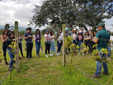 Chaupiestancia Winery: Aprende el mundo del vino a pocos minutos de Quito
