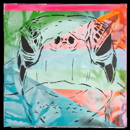Turtle: Urban Barn Quilt