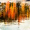 Gull River