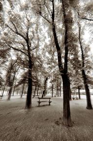 Jardin Luxenburg