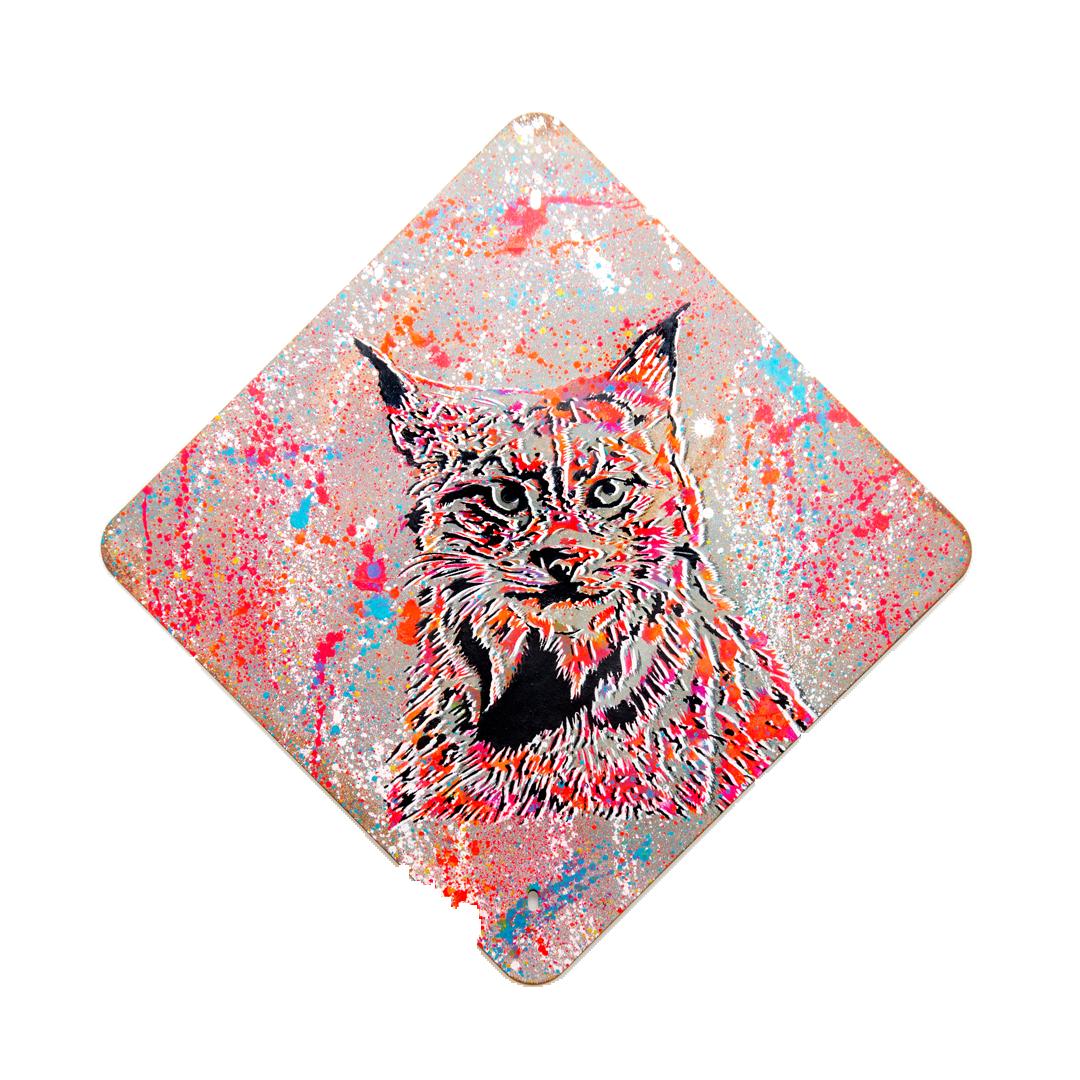 Lynx: Road Closed 🔴