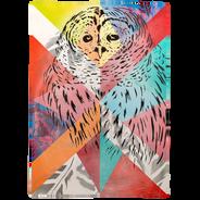 Owl: Barn Quilt 🔴