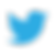 App-Twitter-icon.png